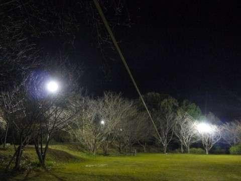 夜に45mロング