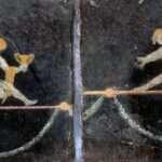 綱渡り(つなわたり)とは?壁画から現代、死亡事故まで