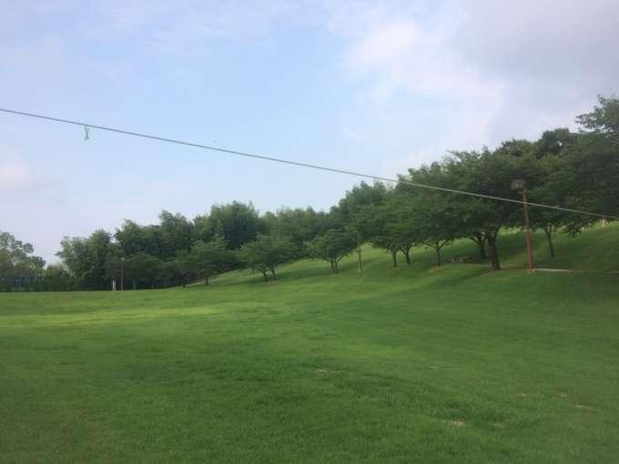 高いライン33m
