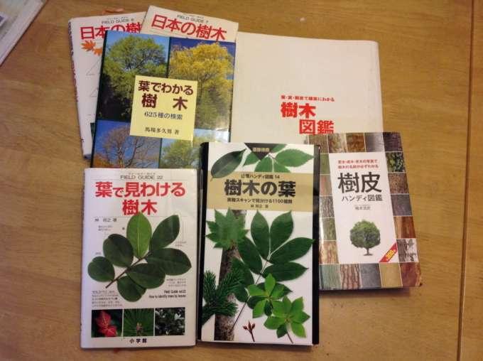 樹木の図鑑