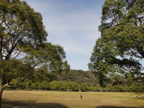 北九州市の山田緑地でスラックライン!!!