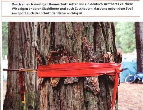 木の幹に他の木の剥がれた樹皮をツリーウェアの代わりにする